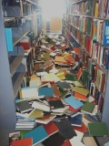 Fallen Books - by Melissa Dubbin and Aaron S. Davidson