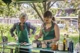Workshop pesto maken met Caroline Zeevat