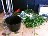 Organisch afval in Hoog Catharijne