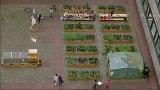 Fotowedstrijd Utrecht Dichtbij