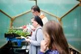 16 mei: Plantdag na IJsheiligen